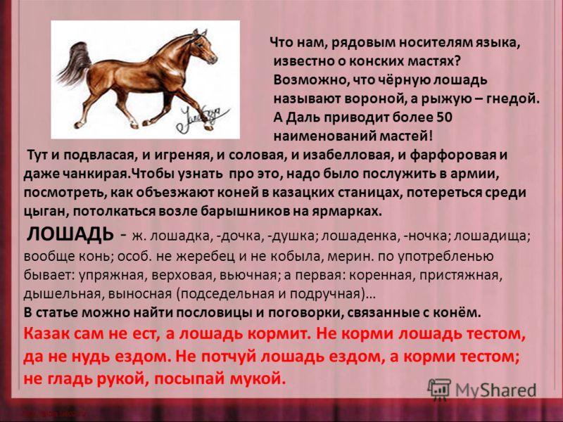 Что нам, рядовым носителям языка, известно о конских мастях? Возможно, что чёрную лошадь называют вороной, а рыжую – гнедой. А Даль приводит более 50 наименований мастей! Тут и подвласая, и игреняя, и соловая, и изабелловая, и фарфоровая и даже чанки