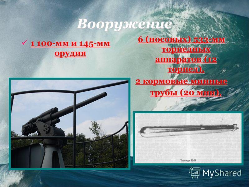 Вооружение 1 100-мм и 145-мм орудия 1 100-мм и 145-мм орудия 6 (носовых) 533-мм торпедных аппаратов (12 торпед), 2 кормовые минные трубы (20 мин).