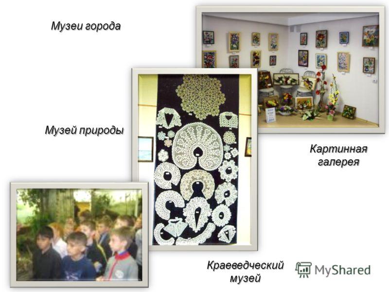 Музей природы Картинная галерея Краеведческий музей Музеи города