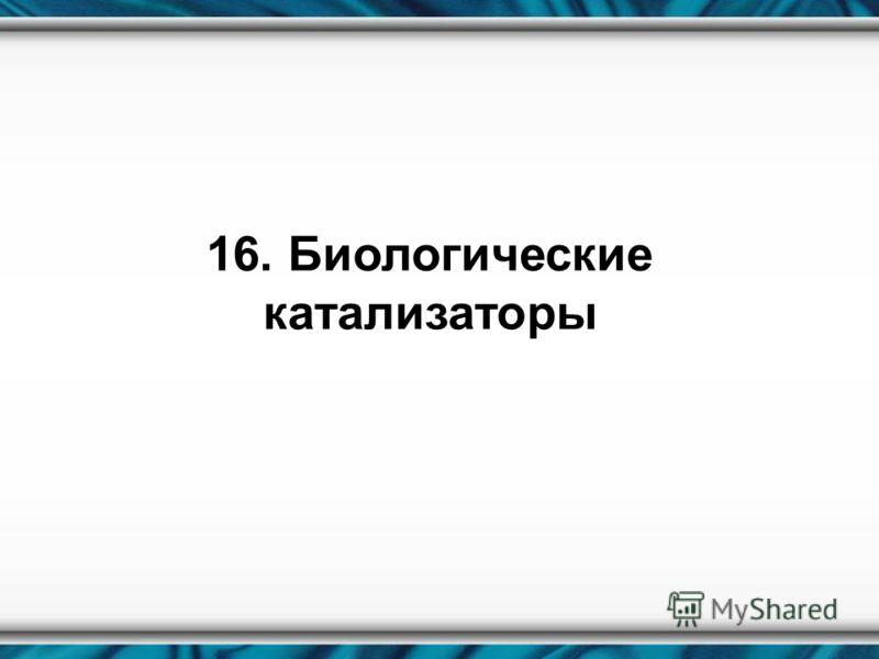 16. Биологические катализаторы