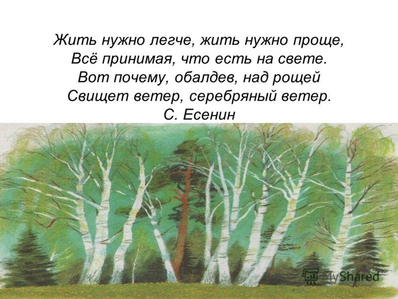 Жить нужно легче, жить нужно проще, Всё принимая, что есть на свете. Вот почему, обалдев, над рощей Свищет ветер, серебряный ветер. С. Есенин