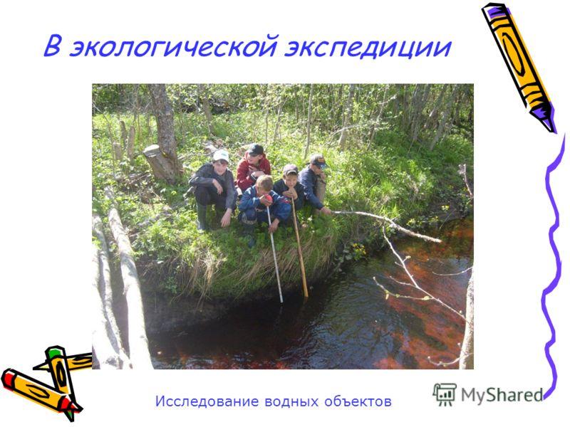 В экологической экспедиции Исследование водных объектов