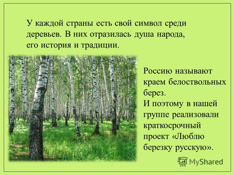 Россию называют краем белоствольных берез. И поэтому в нашей группе реализовали краткосрочный проект «Люблю березку русскую». У каждой страны есть свой символ среди деревьев. В них отразилась душа народа, его история и традиции.