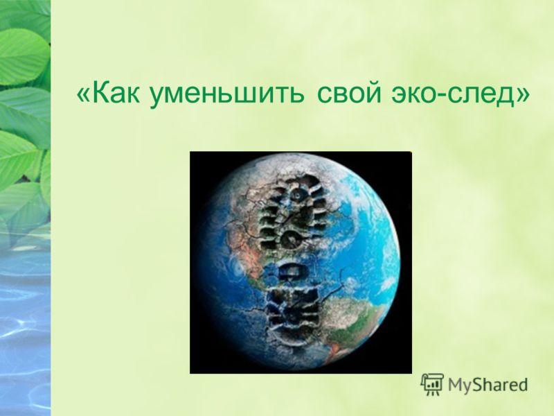 «Как уменьшить свой эко-след»