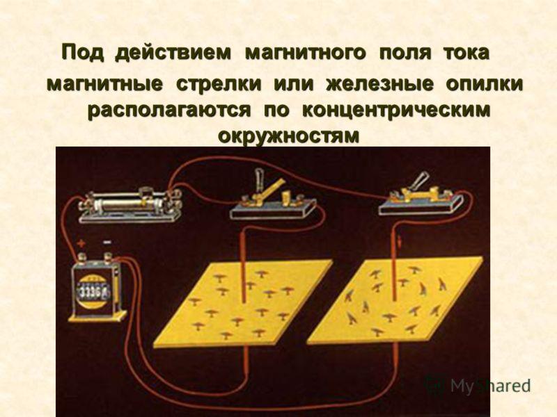 Под действием магнитного поля тока Под действием магнитного поля тока магнитные стрелки или железные опилки располагаются по концентрическим окружностям магнитные стрелки или железные опилки располагаются по концентрическим окружностям