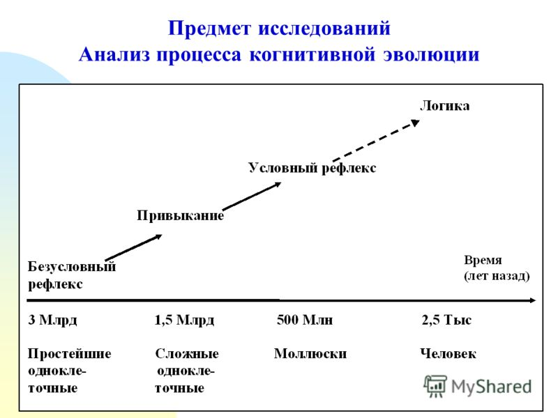 Предмет исследований Анализ процесса когнитивной эволюции