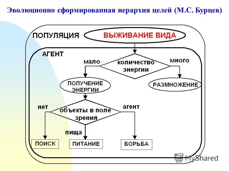 Эволюционно сформированная иерархия целей (М.С. Бурцев)