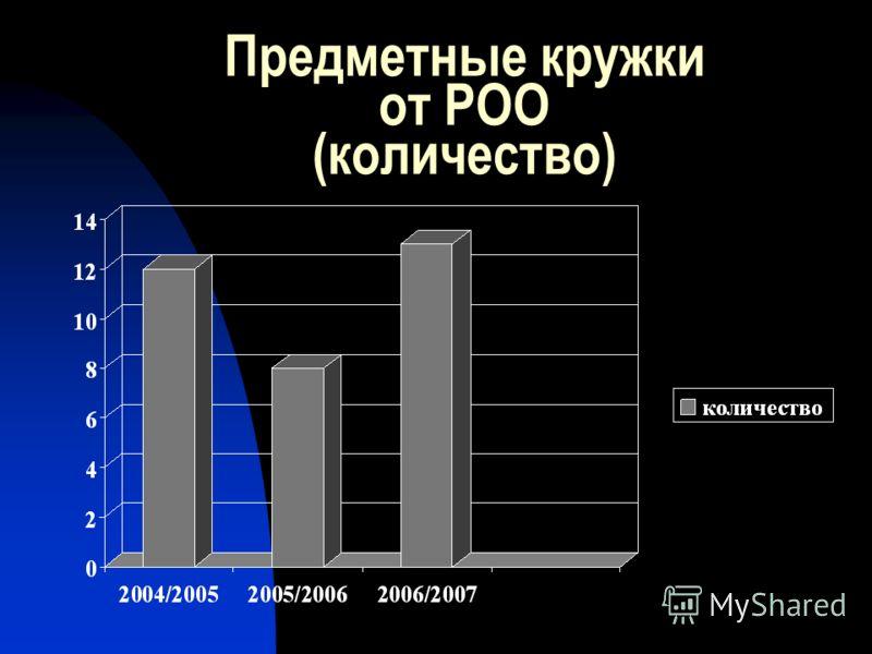 Предметные кружки от РОО (количество)