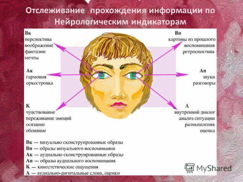 Отслеживание прохождения информации по Нейрологическим индикаторам