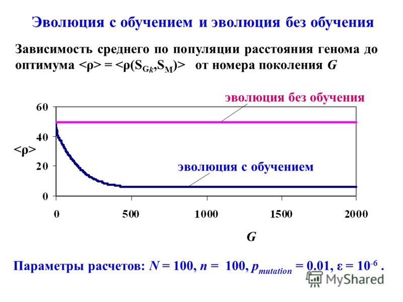 Параметры расчетов: N = 100, n = 100, p mutation = 0.01, ε = 10 -6. Эволюция с обучением и эволюция без обучения Зависимость среднего по популяции расстояния генома до оптимума = от номера поколения G эволюция без обучения эволюция с обучением G