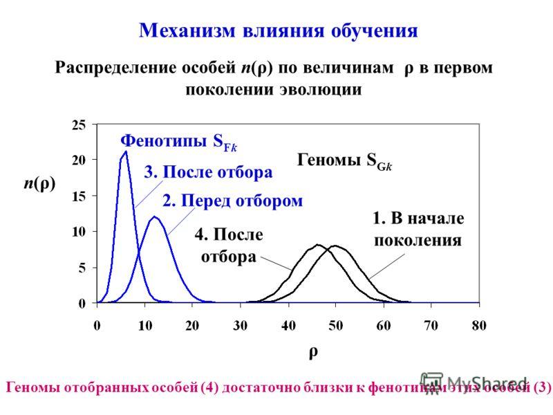 Механизм влияния обучения Распределение особей n(ρ) по величинам ρ в первом поколении эволюции n(ρ) ρ Геномы S Gk 1. В начале поколения 4. После отбора Фенотипы S Fk 3. После отбора 2. Перед отбором Геномы отобранных особей (4) достаточно близки к фе