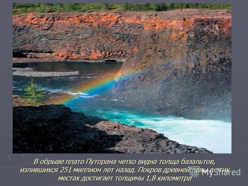 В обрыве плато Путорана четко видна толща базальтов, излившихся 251 миллион лет назад. Покров древней лавы в этих местах достигает толщины 1,8 километра