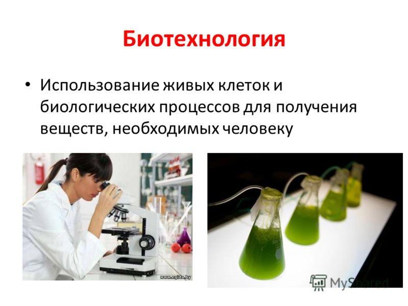 Биотехнология использование живых