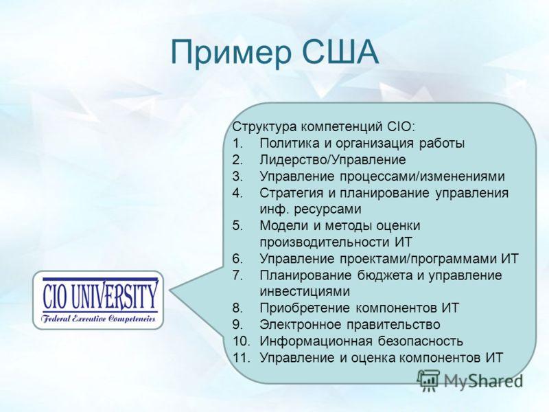 Пример США Структура компетенций CIO: 1.Политика и организация работы 2.Лидерство/Управление 3.Управление процессами/изменениями 4.Стратегия и планирование управления инф. ресурсами 5.Модели и методы оценки производительности ИТ 6.Управление проектам