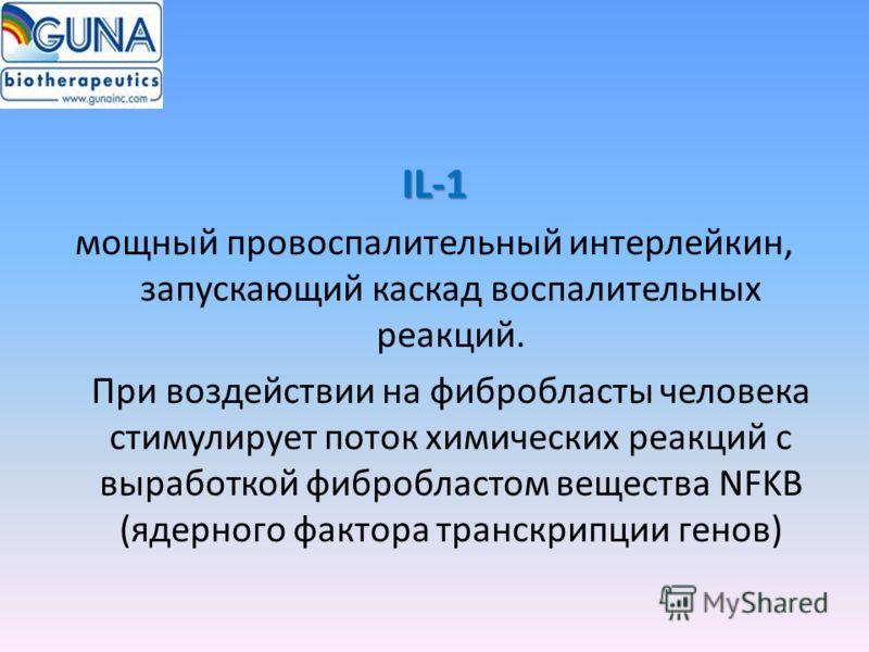 IL-1 мощный провоспалительный интерлейкин, запускающий каскад воспалительных реакций. При воздействии на фибробласты человека стимулирует поток химических реакций с выработкой фибробластом вещества NFKB (ядерного фактора транскрипции генов)