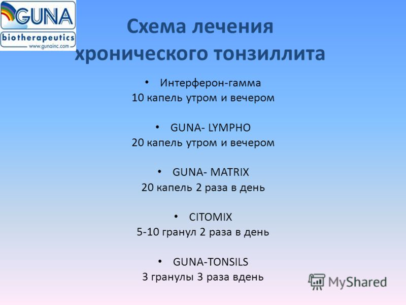 Схема лечения хронического тонзиллита Интерферон-гамма 10 капель утром и вечером GUNA- LYMPHO 20 капель утром и вечером GUNA- MATRIX 20 капель 2 раза в день CITOMIX 5-10 гранул 2 раза в день GUNA-TONSILS 3 гранулы 3 раза вдень