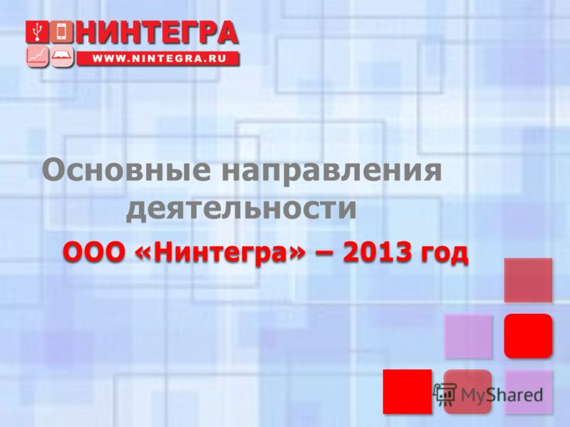 Основные направления деятельности ООО «Нинтегра» – 2013 год