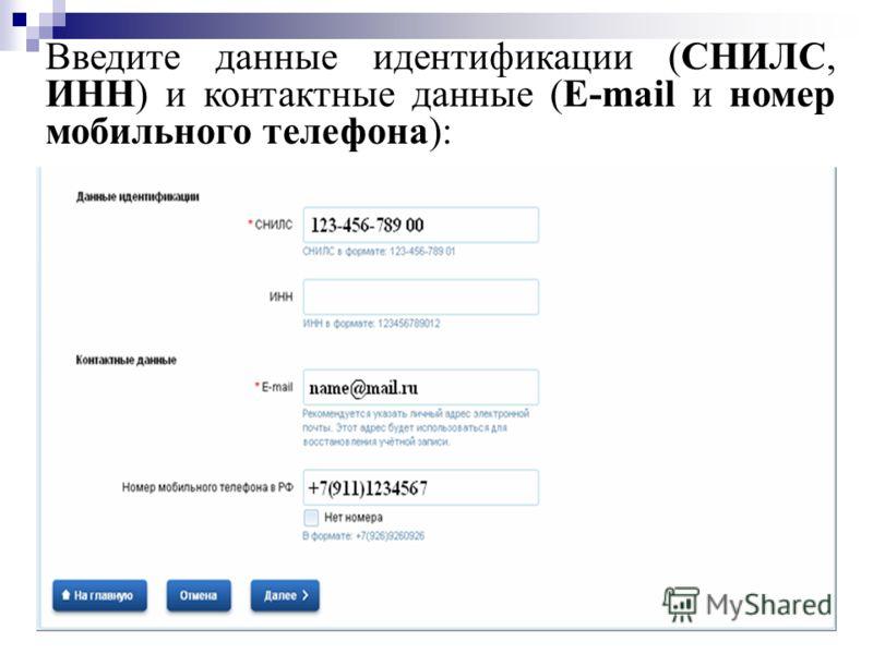 Введите данные идентификации (СНИЛС, ИНН) и контактные данные (E-mail и номер мобильного телефона):