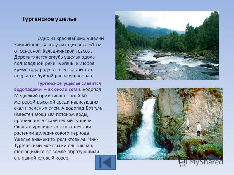 Тургенское ущелье Одно из красивейших ущелий Заилийского Алатау находится на 61 км от основной Кульджинской трассы. Дорога тянется вглубь ущелья вдоль полноводной реки Тургень. В любое время года радуют глаз склоны гор, покрытые буйной растительность
