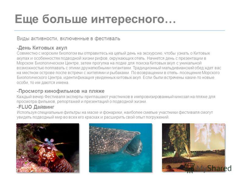 Еще больше интересного … Виды активности, включенные в фестиваль -День Китовых акул Совместно с морским биологом вы отправитесь на целый день на экскурсию, чтобы узнать о Китовых акулах и особенностях подводной жизни рифов, окружающих отель. Начнется