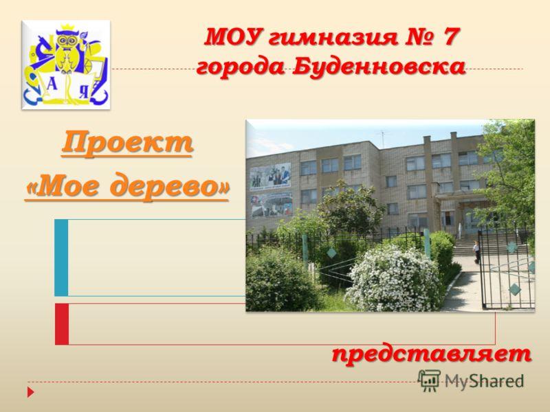 МОУ гимназия 7 города Буденновска представляет Проект «Мое дерево» «Мое дерево»