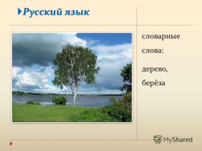Русский язык русский язык словарные