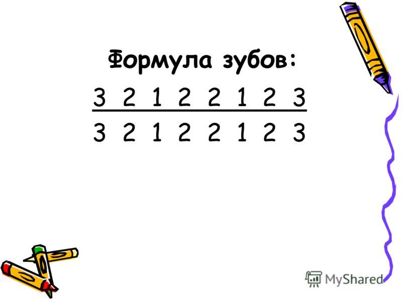 Формула зубов: 3 2 1 2 2 1 2 3