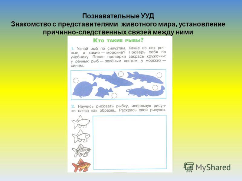 Познавательные УУД Знакомство с представителями животного мира, установление причинно-следственных связей между ними