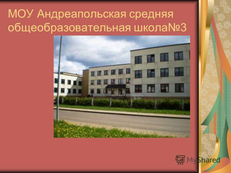 МОУ Андреапольская средняя общеобразовательная школа3