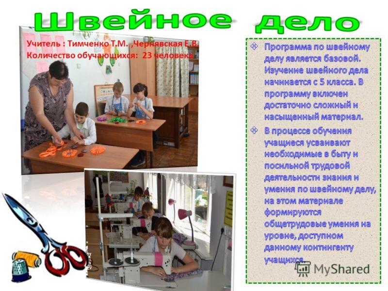 Учитель : Тимченко Т.М.,Чернявская Е.В. Количество обучающихся: 23 человека