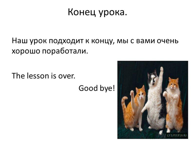 Конец урока. Наш урок подходит к концу, мы с вами очень хорошо поработали. The lesson is over. Good bye!