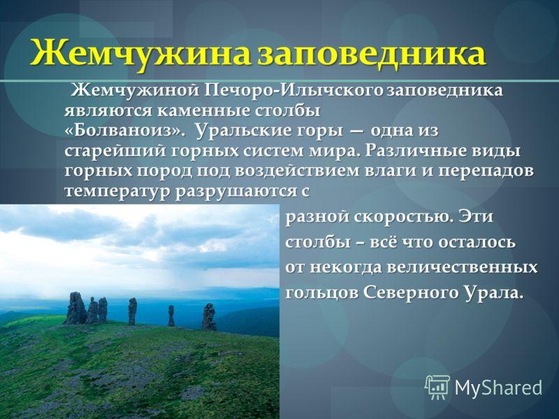 Жемчужина заповедника Жемчужиной Печоро-Илычского заповедника являются каменные столбы «Болваноиз». Уральские горы одна из старейший горных систем мира. Различные виды горных пород под воздействием влаги и перепадов температур разрушаются с разной ск
