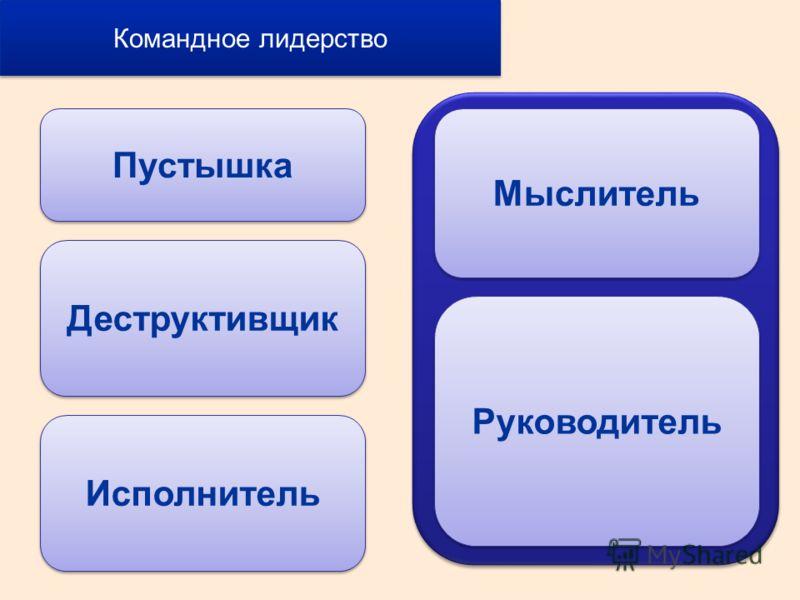 Пустышка Деструктивщик Исполнитель Мыслитель Руководитель Командное лидерство