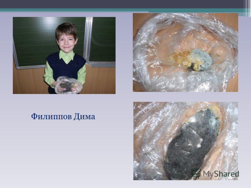 Филиппов Дима