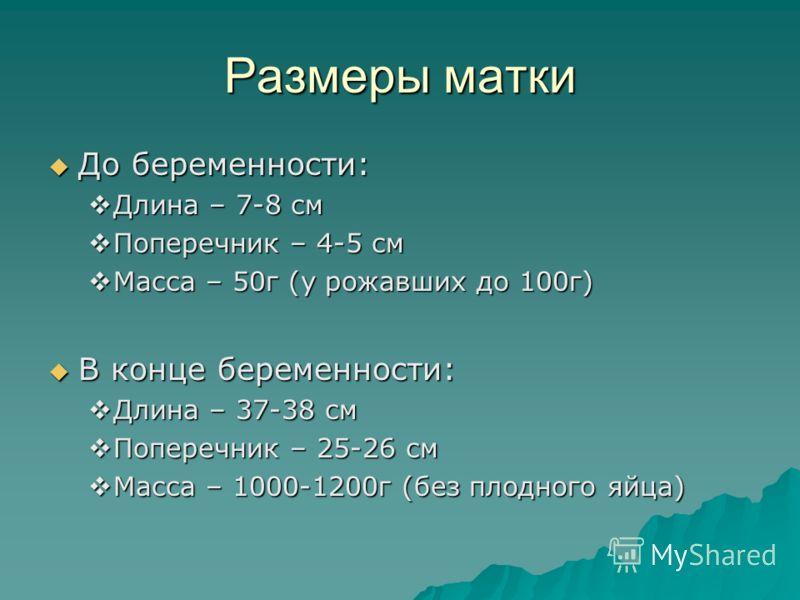 Размеры матки До беременности: До беременности: Длина – 7-8 см Длина – 7-8 см Поперечник – 4-5 см Поперечник – 4-5 см Масса – 50г (у рожавших до 100г) Масса – 50г (у рожавших до 100г) В конце беременности: В конце беременности: Длина – 37-38 см Длина