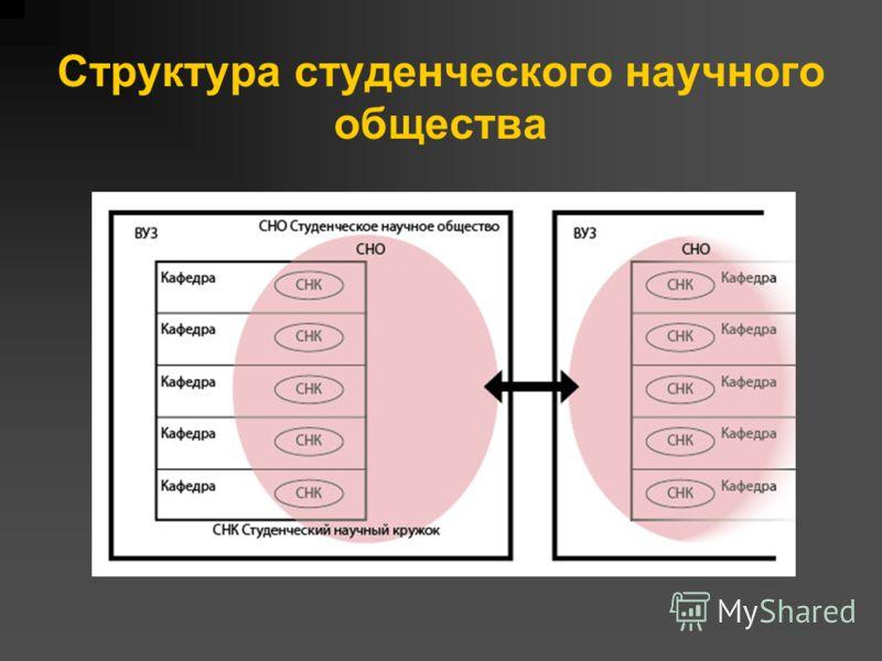 Структура студенческого научного общества