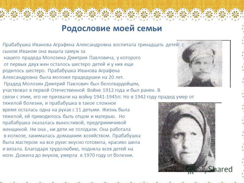 Родословие моей семьи Прабабушка Иванова Аграфена Александровна воспитала тринадцать детей: с сыном Иваном она вышла замуж за нашего прадеда Молозина Дмитрия Павловича, у которого от первых двух жен осталось шестеро детей и у них еще родилось шестеро
