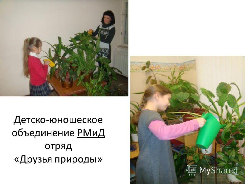 Детско-юношеское объединение РМиД отряд «Друзья природы»