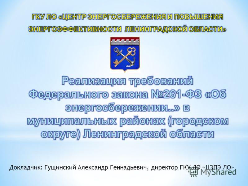 Докладчик: Гущинский Александр Геннадьевич, директор ГКУ ЛО «ЦЭПЭ ЛО»