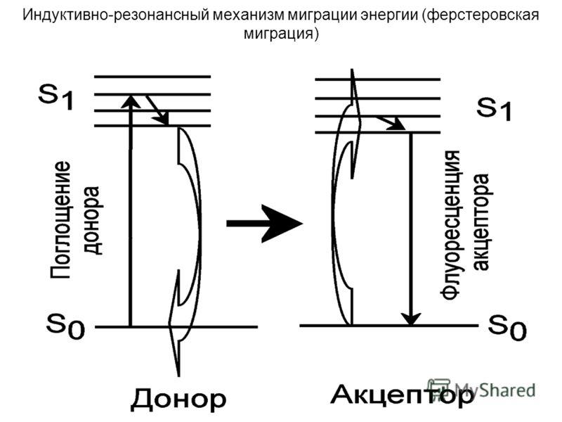 42 Индуктивно-резонансный механизм миграции энергии (ферстеровская миграция)