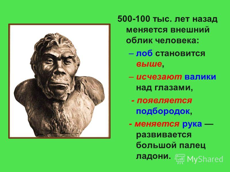 500-100 тыс. лет назад меняется внешний облик человека: –лоб становится выше, –исчезают валики над глазами, - появляется подбородок, - меняется рука развивается большой палец ладони.