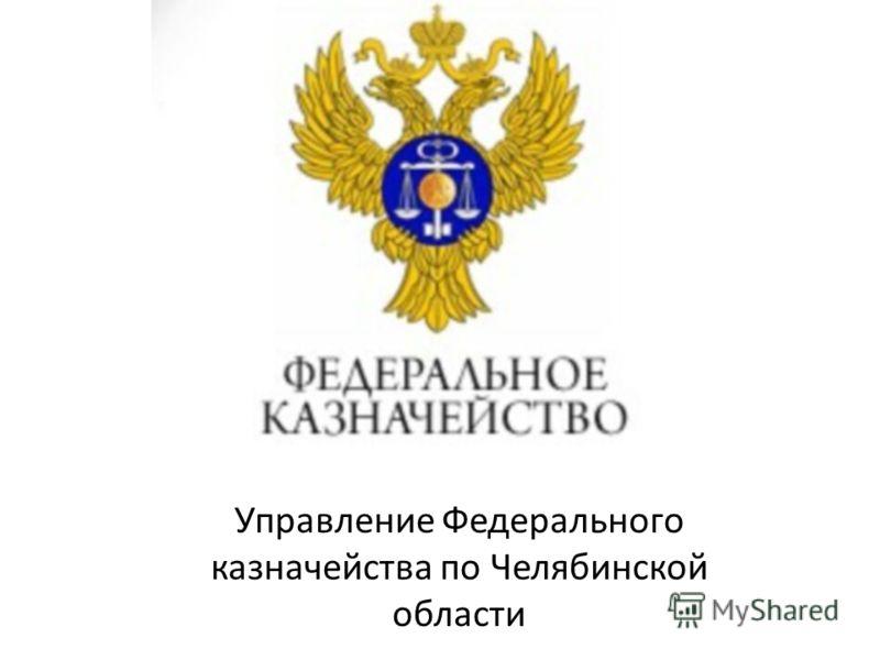 Управление Федерального казначейства по Челябинской области
