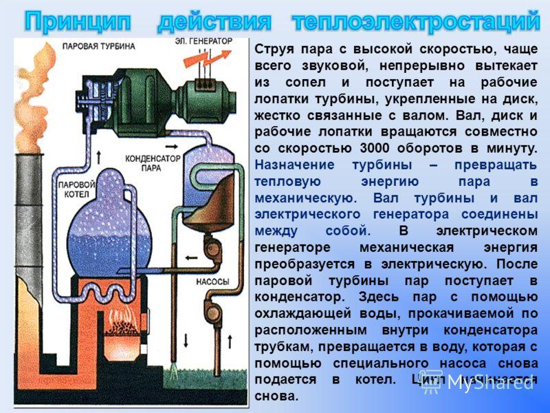 Струя пара с высокой скоростью, чаще всего звуковой, непрерывно вытекает из сопел и поступает на рабочие лопатки турбины, укрепленные на диск, жестко связанные с валом. Вал, диск и рабочие лопатки вращаются совместно со скоростью 3000 оборотов в мину