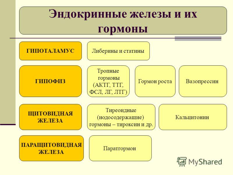 статины википедия