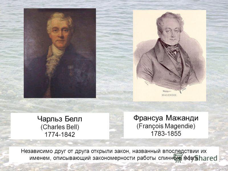 Чарльз Белл (Charles Bell) 1774-1842 Франсуа Мажанди (François Magendie) 1783-1855 Независимо друг от друга открыли закон, названный впоследствии их именем, описывающий закономерности работы спинного мозга