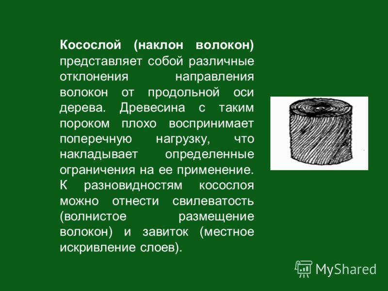Косослой (наклон волокон) представляет собой различные отклонения направления волокон от продольной оси дерева. Древесина с таким пороком плохо воспринимает поперечную нагрузку, что накладывает определенные ограничения на ее применение. К разновиднос