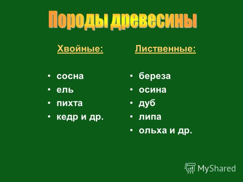 Хвойные: сосна ель пихта кедр и др. Лиственные: береза осина дуб липа ольха и др.