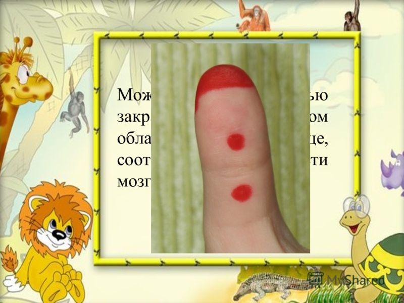 Можно и полностью закрасить красным цветом область на пальце, соответствующую области мозга