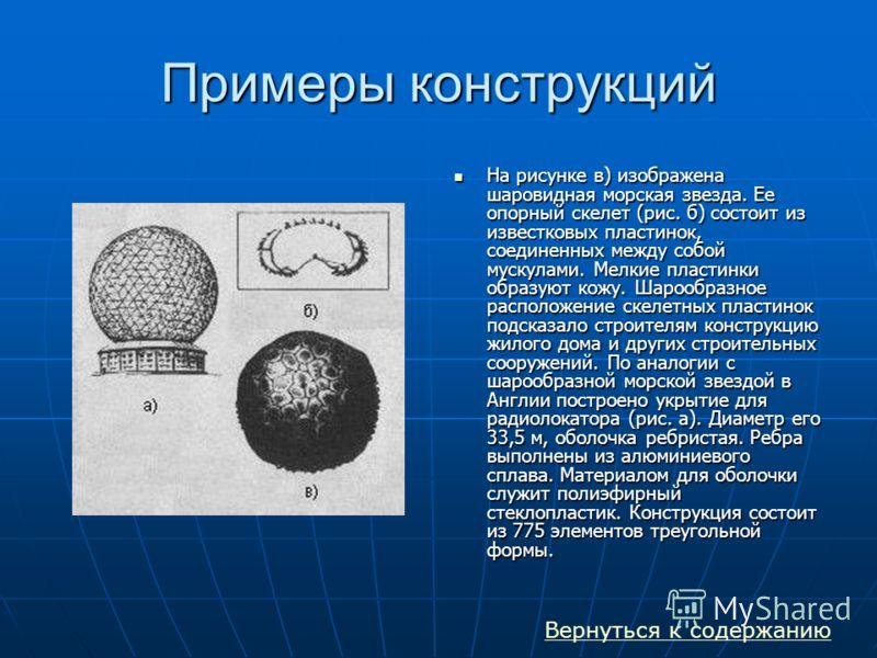 Примеры конструкций На рисунке в) изображена шаровидная морская звезда. Ее опорный скелет (рис. б) состоит из известковых пластинок, соединенных между собой мускулами. Мелкие пластинки образуют кожу. Шарообразное расположение скелетных пластинок подс