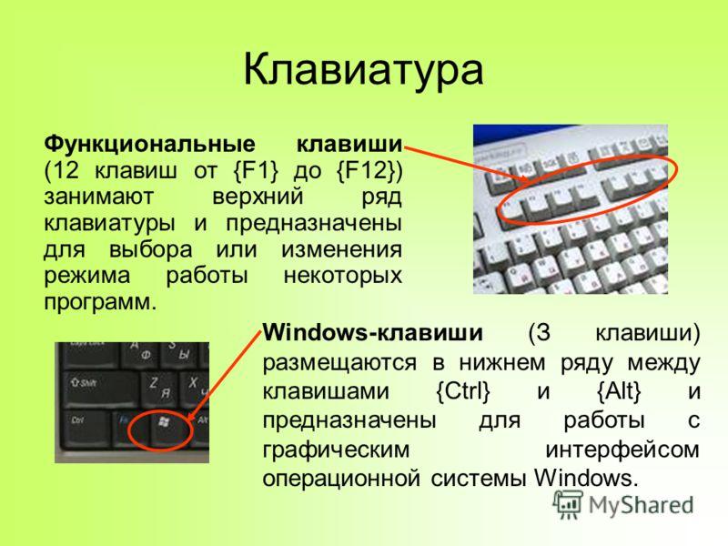 Клавиатура Функциональные клавиши (12 клавиш от {F1} до {F12}) занимают верхний ряд клавиатуры и предназначены для выбора или изменения режима работы некоторых программ. Windows-клавиши (З клавиши) размещаются в нижнем ряду между клавишами {Ctrl} и {